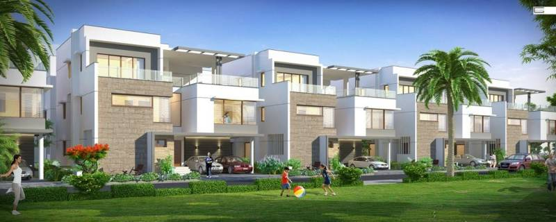 Images for Elevation of Shanta Spring Valley