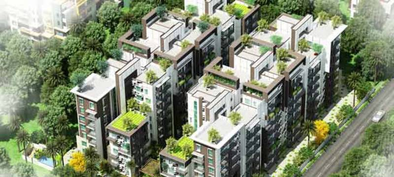 maple-square-a Images for Elevation of Estella Maple Square A
