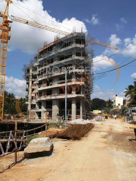 Images for Construction Status of Citrus Shelton