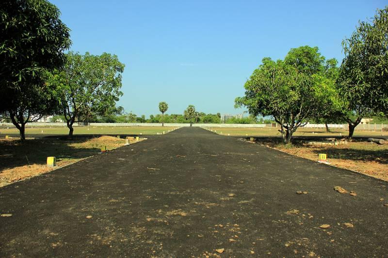 Images for Amenities of Arana Arana Enclave