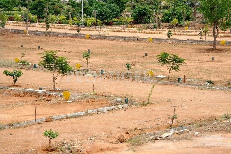 3767 sq ft plot for sale in garnet construction sunshine for Sunshine construction