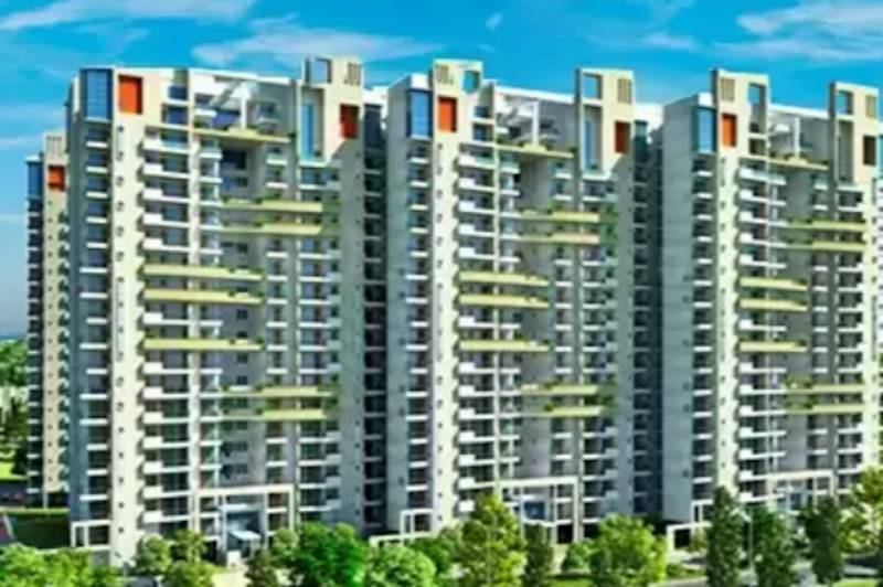 Images for Project