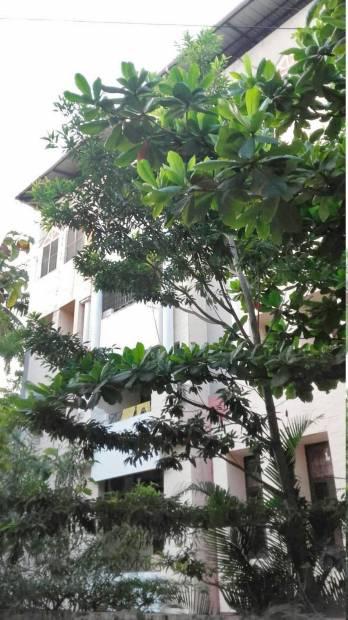 meenakshi Images for Elevation of Lancor Holdings Meenakshi