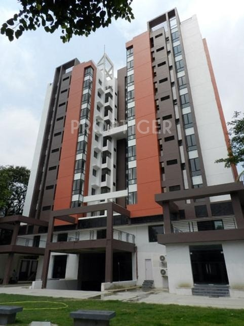 3221 Sq Ft 4 Bhk 4t Apartment For Sale In Belani Group
