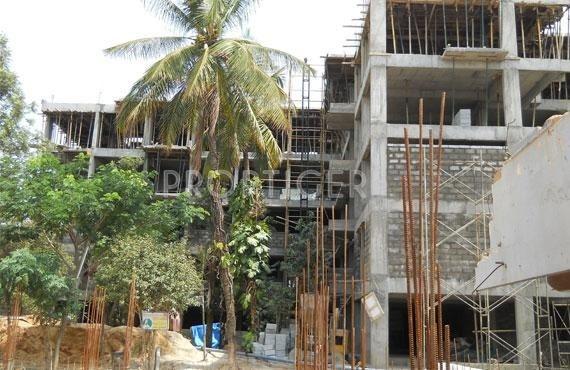 raintree Construction Status Sept-19