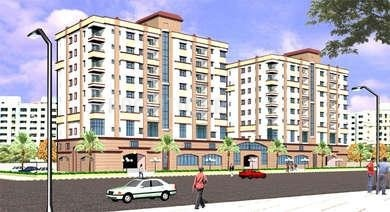 Images for Elevation of Daffodil Group Divine Bliss