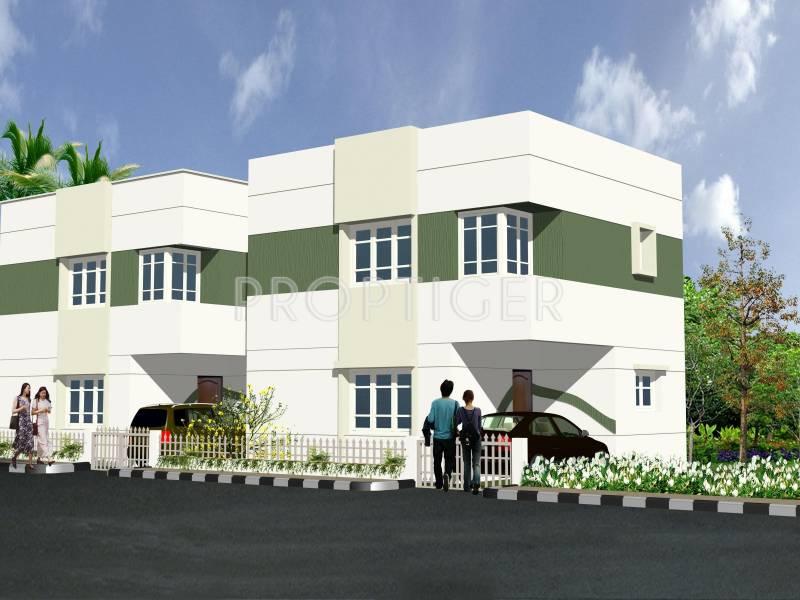 Nandi Constructive Sunshine B
