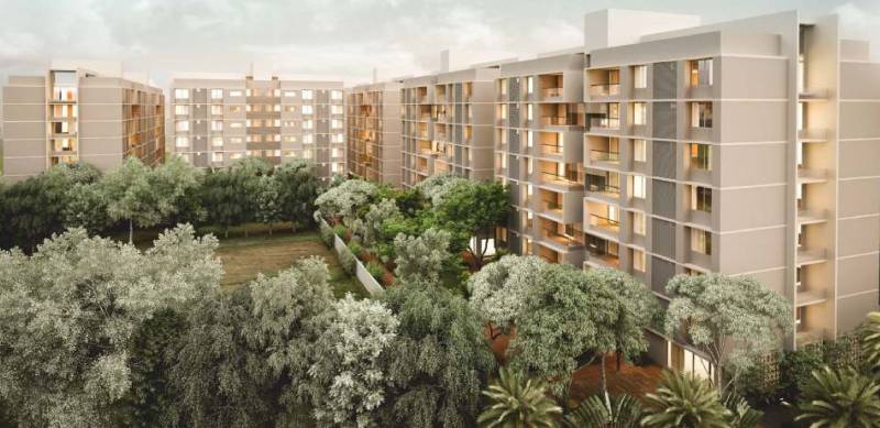 Images for Elevation of Siddhraj Z Plus