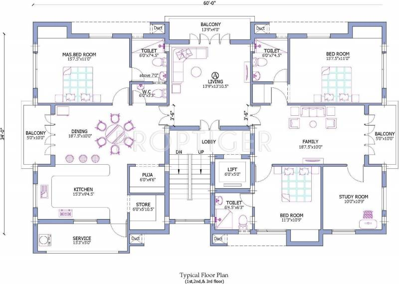 Images for Cluster Plan of Firm Damera Royale