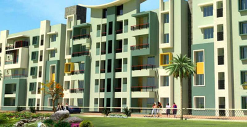 Images for Elevation of Mahadev Orchid
