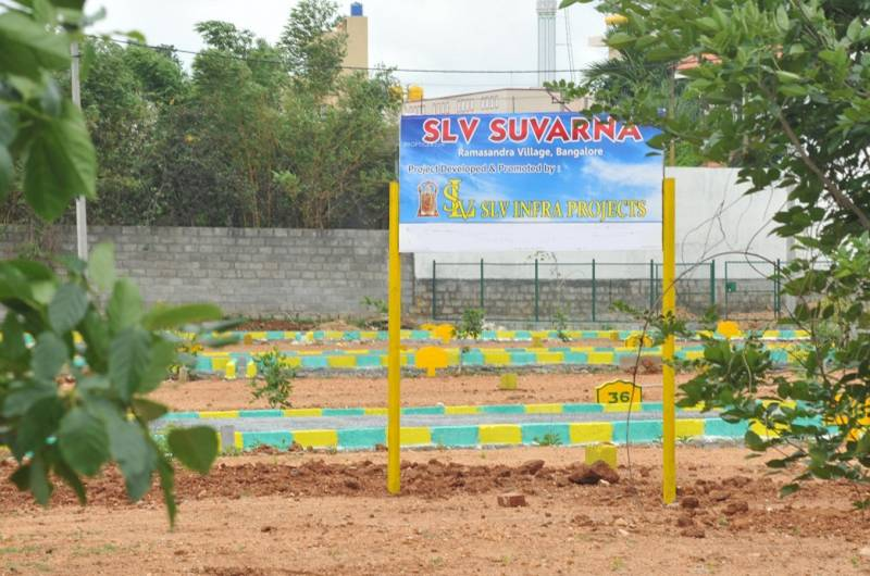 Images for Main Other of SLV SLV Suvarna