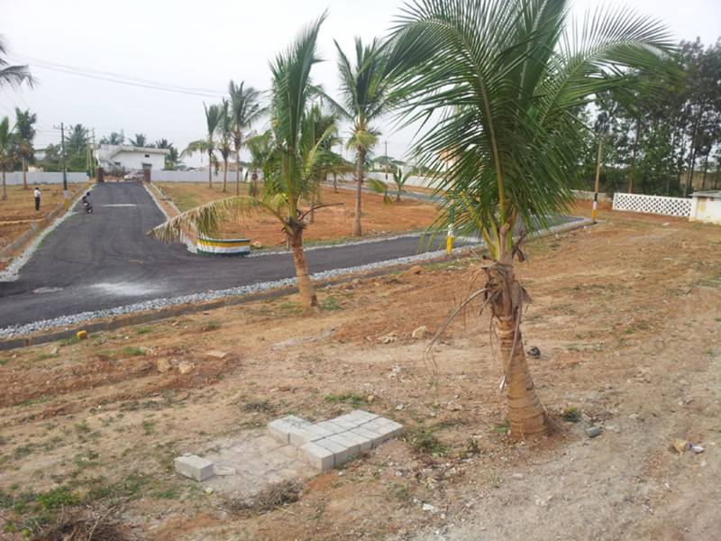 Images for Main Other of SLV Infra Projects SLV Cocogroove Layout