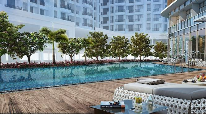 north-elara Swimming Pool