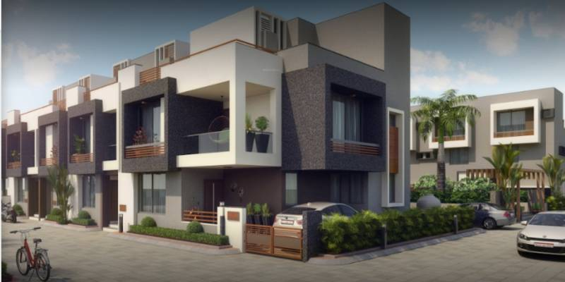 dev-aashish-41 Elevation