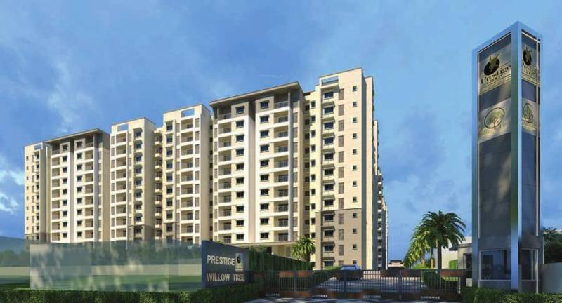 Images for Elevation of Prestige Willow Tree