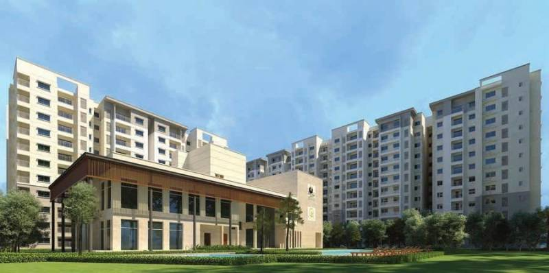 Images for Amenities of Prestige Willow Tree