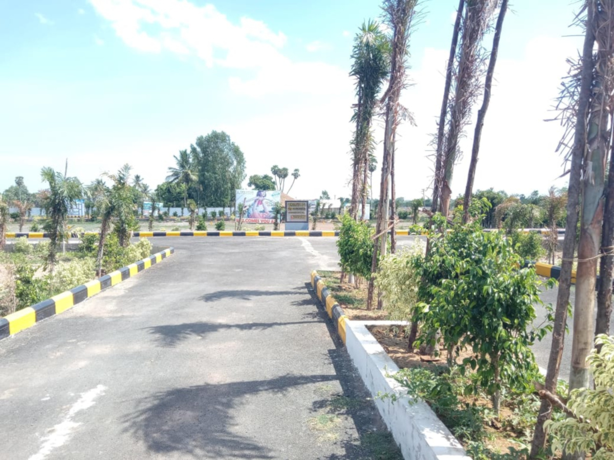 1725 Sq Ft Plot For Sale In Budget Housing Budget Housing