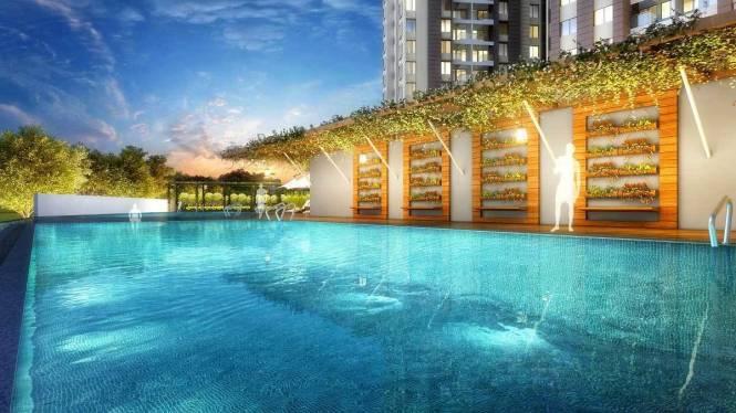 blue-waters Swimming Pool
