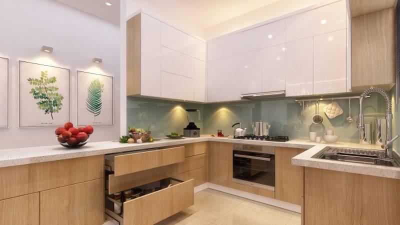 auriga Kitchen