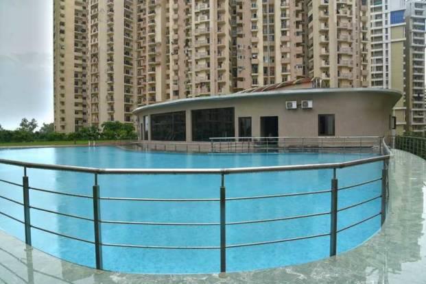 floraville Swimming Pool