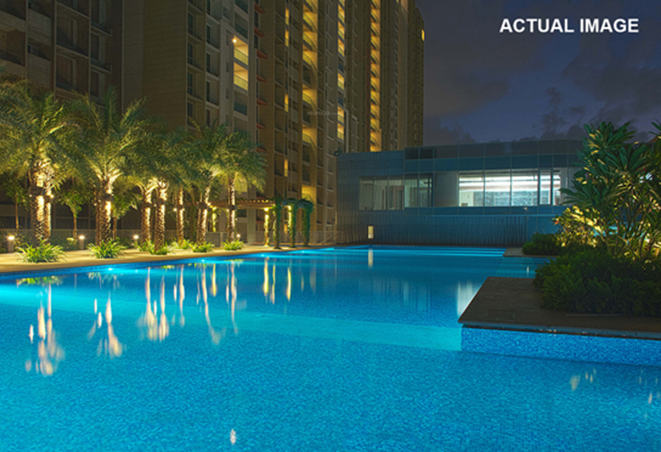 Sheth vasant oasis in andheri east mumbai price for Swimming pool oasis
