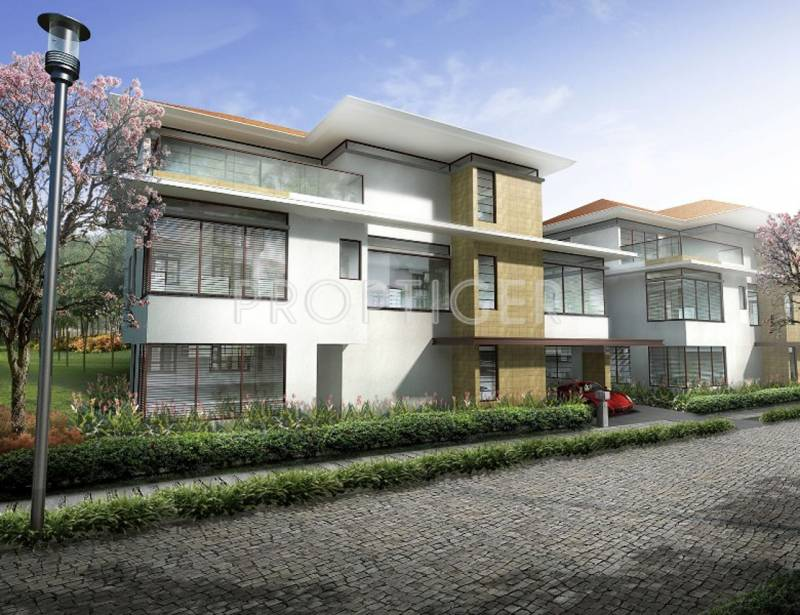 Images for Elevation of Olympia Panache