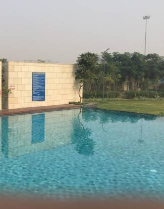 emerald-floors Swimming Pool
