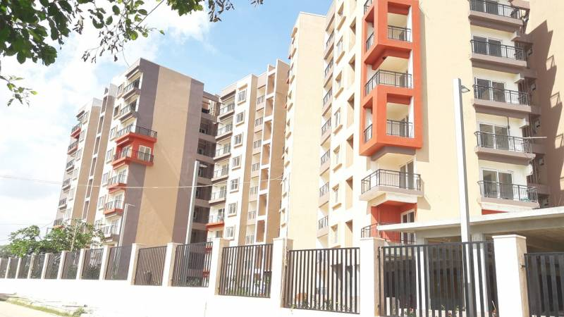 Images for Elevation of SJR Fiesta Homes
