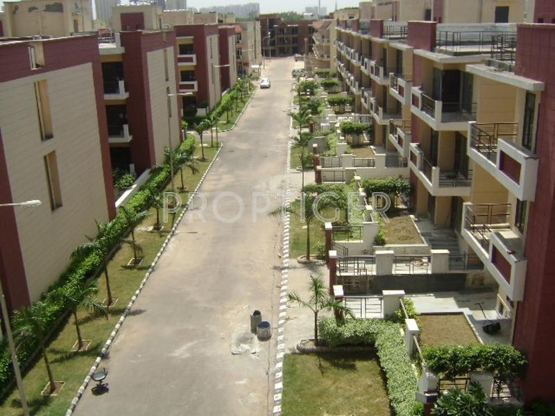 Symphony Floors Sector Gurgaon Price Location Map Floor Plan Amp Reviews Proptiger