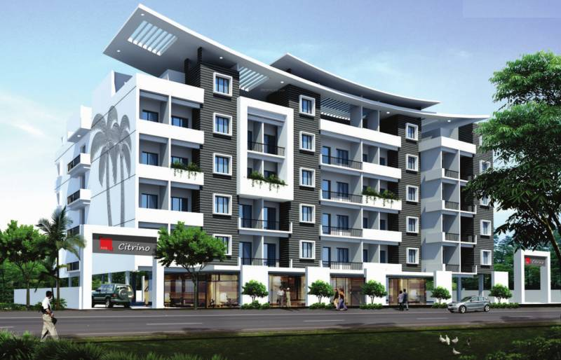 Images for Elevation of Axis Concept Citrino