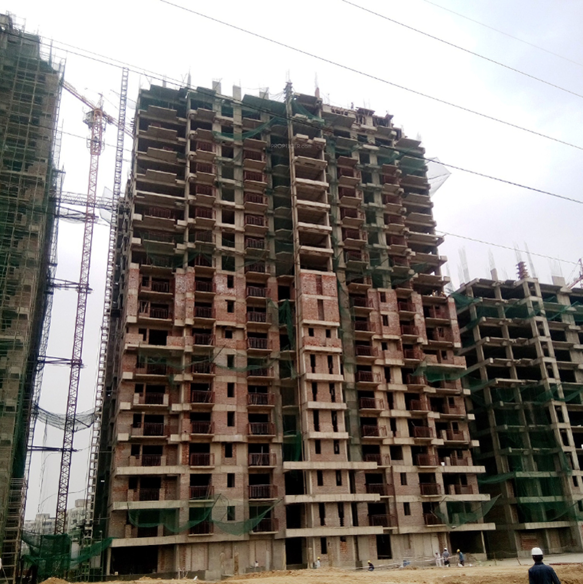 2300 Sq Ft 3 BHK 4T Apartment For Sale In ATS Green Golf