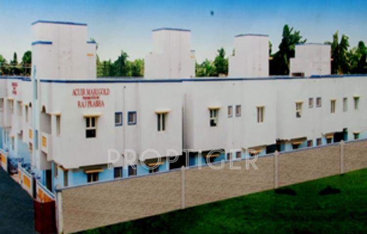 rajprabha-associates acuir-marigold Project Image