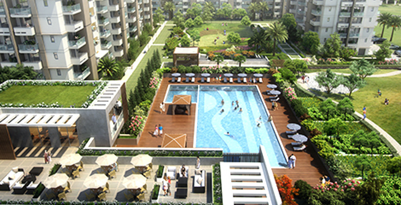 Image Of Swimming Pool Of Emaar India Imperial Gardens Sector 102 Gurgaon