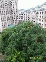 Images for Elevation of Reputed Builder Mayuresh Park