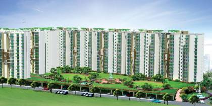 Images for Elevation of Terra Heritage