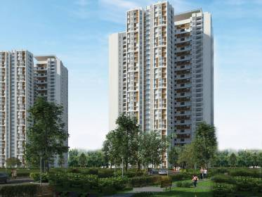 Images for Elevation of Prestige Falcon City