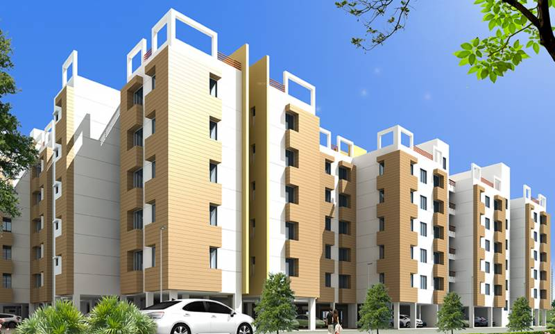 Images for Elevation of Orchid Lavanya