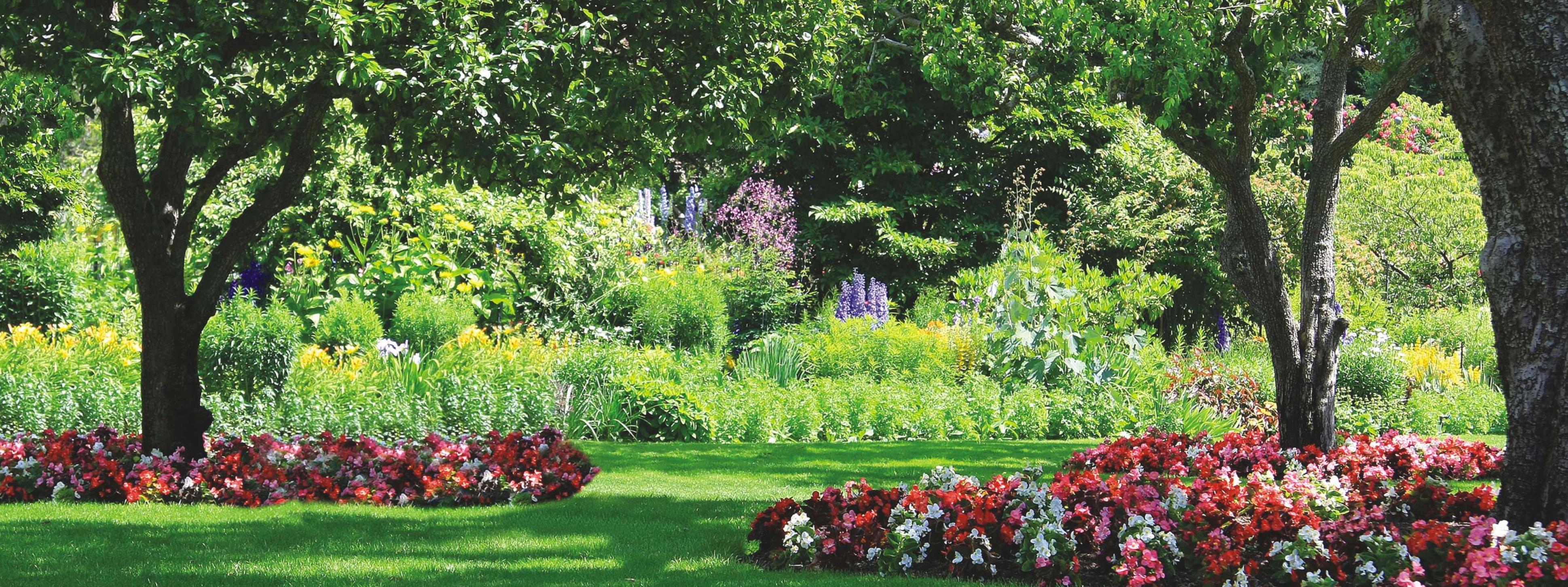 Ландшафтный дизайн фруктового сада