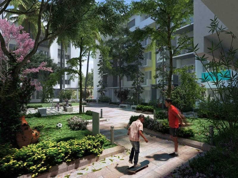 raintree Elevation