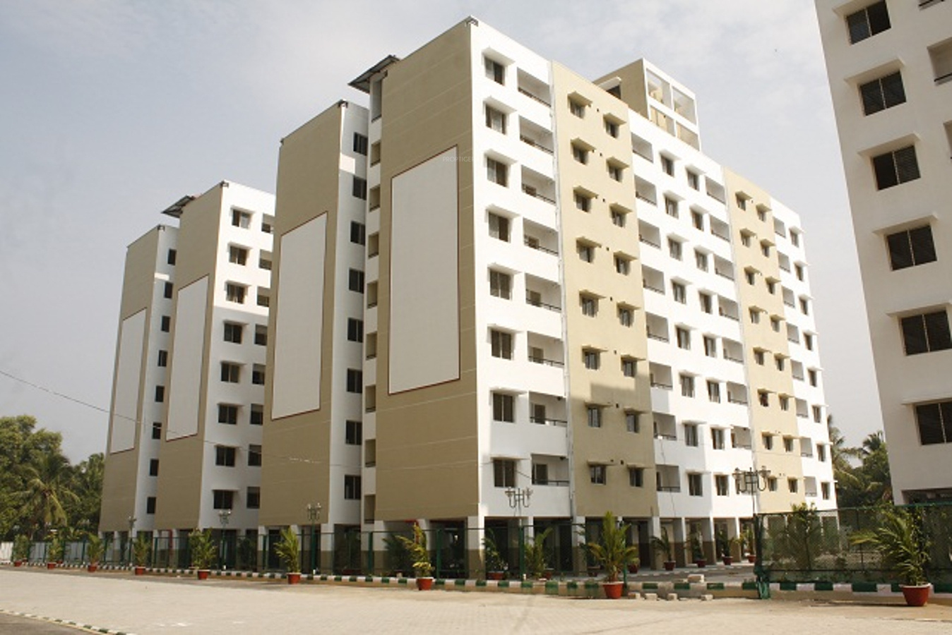 1 Beds 1 Baths 440 Sq Ft Plan 924 7: 924 Sq Ft 3 BHK 2T Apartment For Sale In Confident Group