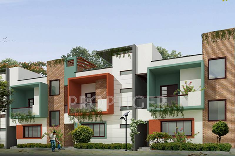 Images for Elevation of ZED Ria