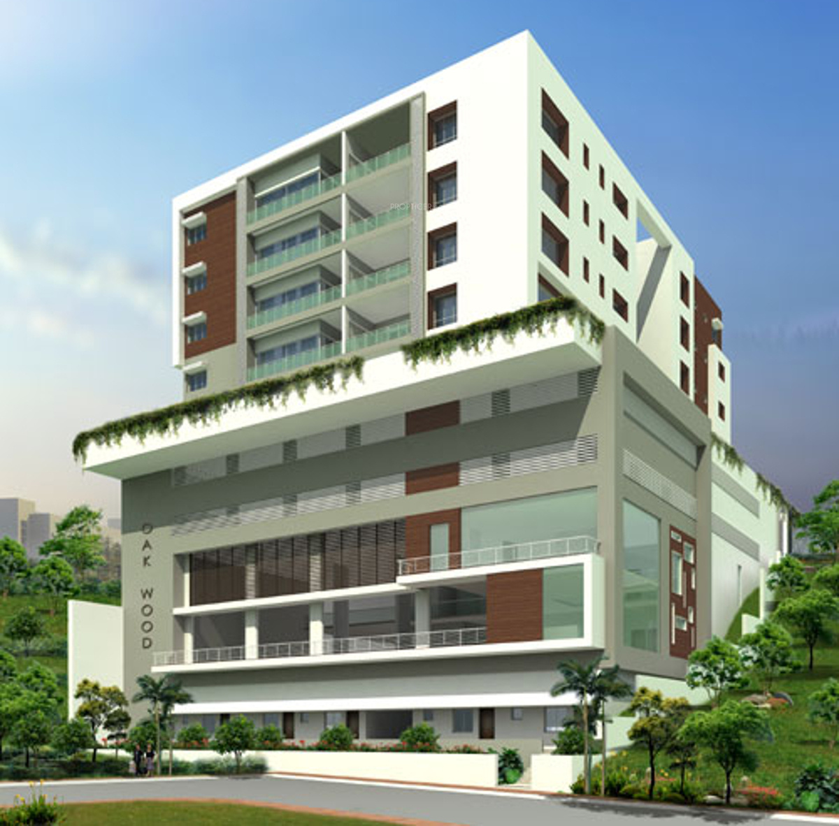 Wood Elevation Ymca : Sq ft bhk t apartment for sale in sri sreenivasa