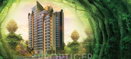 Images for Elevation of CHD Vann