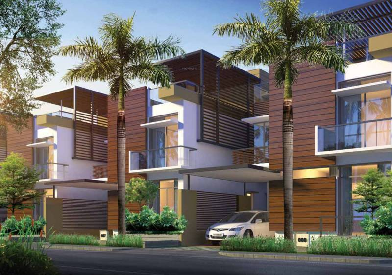 pureearth Images for Elevation of Manar Pureearth