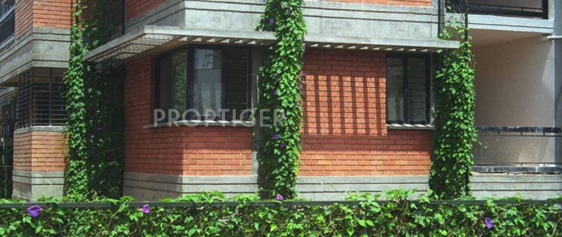 Images for Elevation of Total Environment Bougainvillea