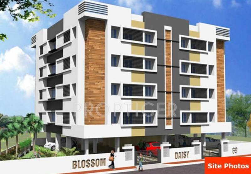 blossom-property-developers daisy Project Image