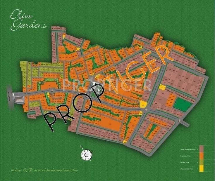 Images For Master Plan Of Canopy Group Olive Gardens