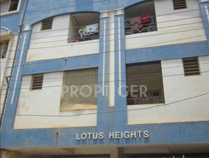 lotus-heights Elevation