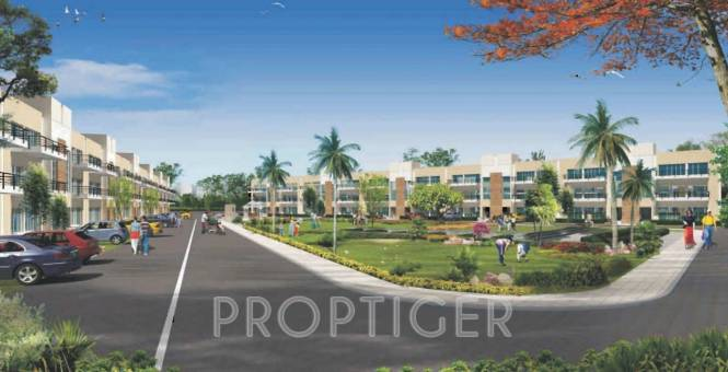 Images for Elevation of RPS Palms