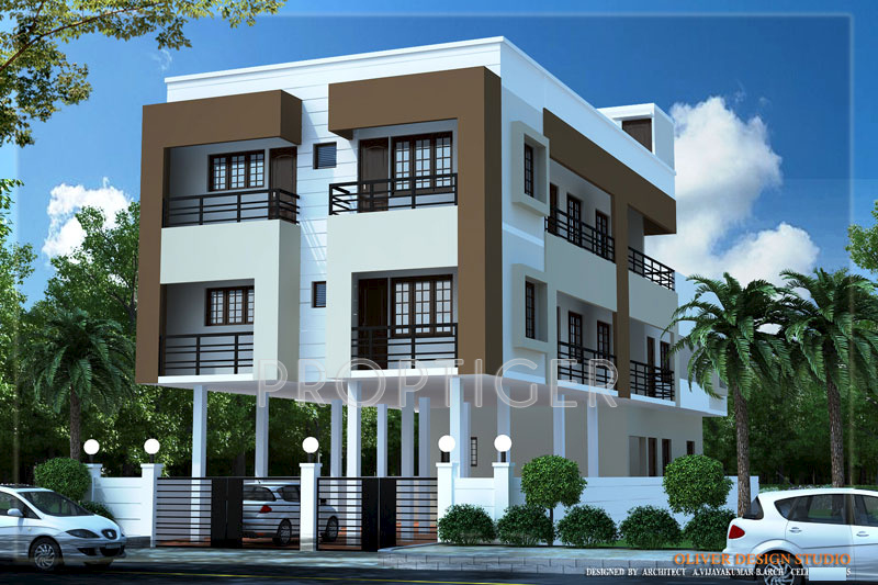 Images for Elevation of Malar Constructions Goldenrod